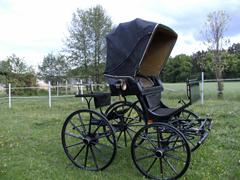 kutsche spider phaeton in 97353 weisentheid pferde. Black Bedroom Furniture Sets. Home Design Ideas